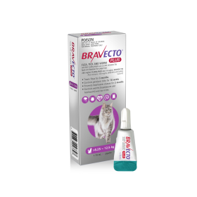Bravecto Plus Cat S/O 500mg 6.25kg - 12.5kg Purple