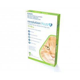 Revolution Plus for Large Cats 5.1-10kg 3 Pack