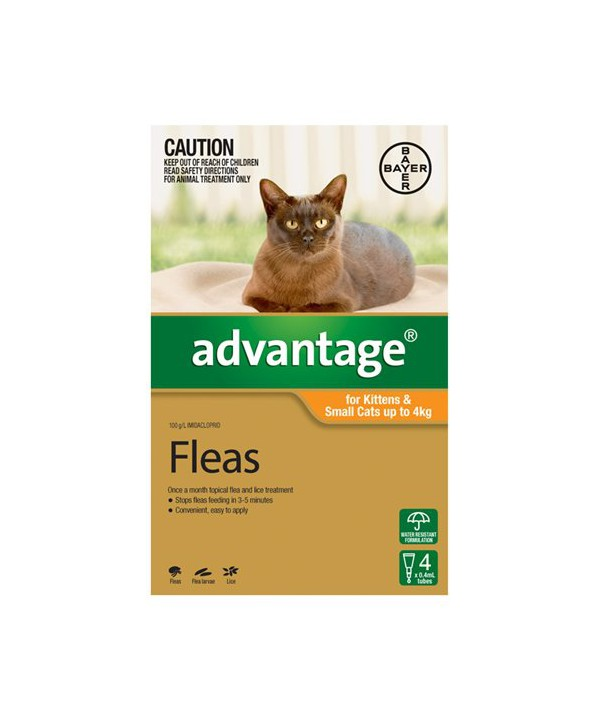 ADVANTAGE CAT UP TO 4KG ORANGE 4s