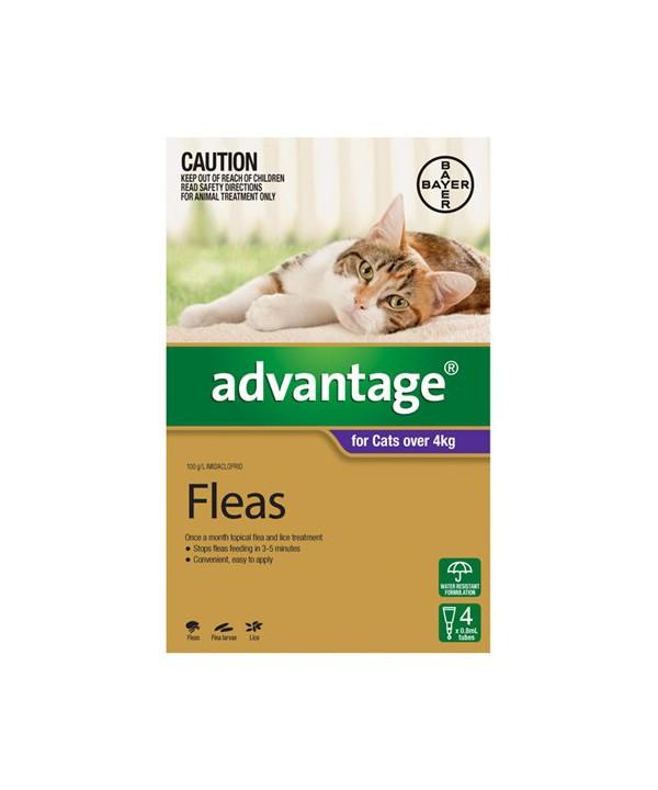 ADVANTAGE CAT > 4KG PURPLE 4s