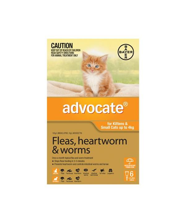 ADVOCATE CAT UP TO 4KG ORANGE 6s