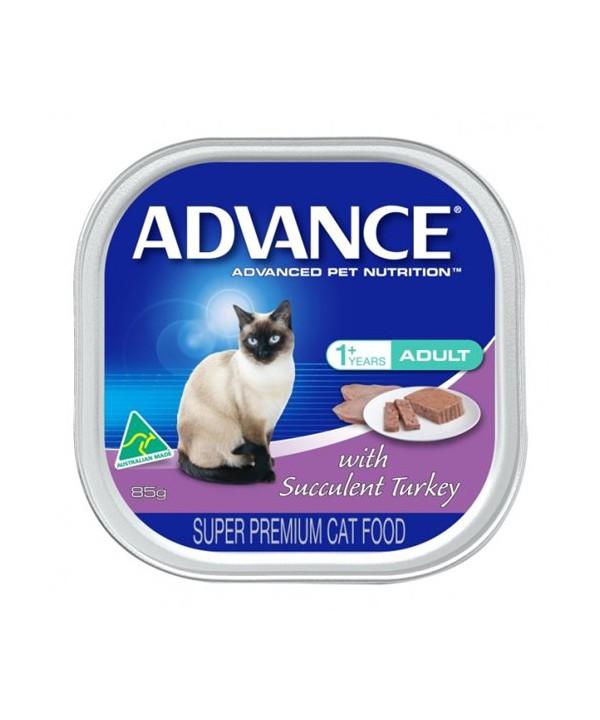 ADV CAT ADULT SUCC TURK 85Gx7x6