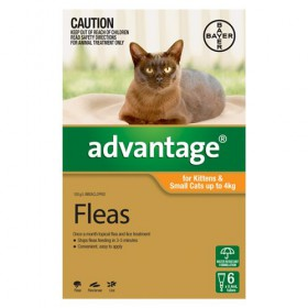 ADVANTAGE CAT UP TO 4KG ORANGE 6s