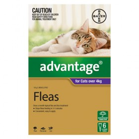 Advantage Cat Large 4kg+ Purple - 6pk