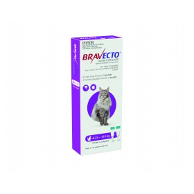 BRAVECTO CAT F&T S/O LRG 6.25kg - 12.5kg PURPLE 2PK