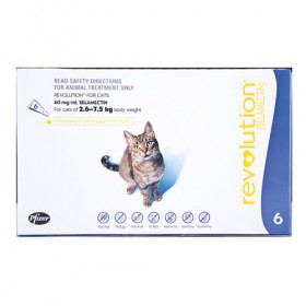 REVOLUTION CAT 2.6-7.5KG BLUE 6s