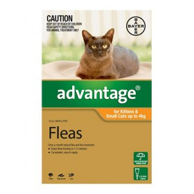 Advantage Cat Small 0-4kg Orange - 1pk
