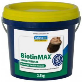 BiotinMAX Concentrate 2.5kg