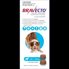 Bravecto Dog Chew Large 20-40kg Blue - 2pk