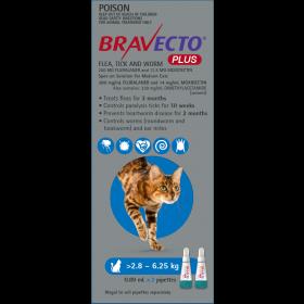 Bravecto Plus Cat Spot On Medium 2.8-6.25kg Blue - 2pk
