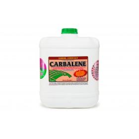 Carbine Carbalene 16L