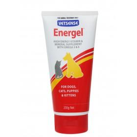 ENERGEL 200G