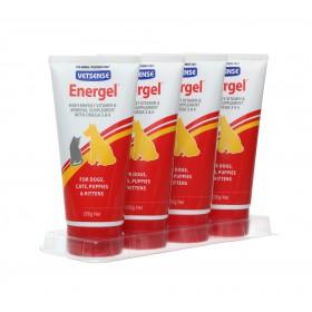 ENERGEL 200Gx4