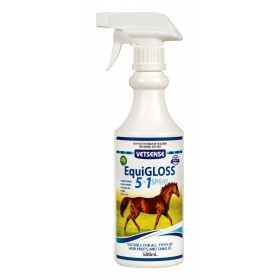 Equigloss 5 In 1 Spray 500ml