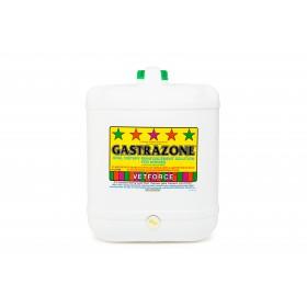 Carbine Gastrazone 16L