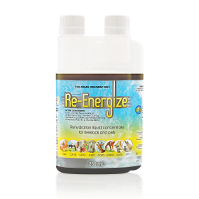 Re-Energize 250ml
