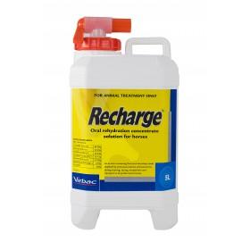 Recharge Horse 5L
