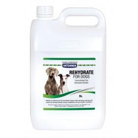 Rehydrate Greyhound 5L